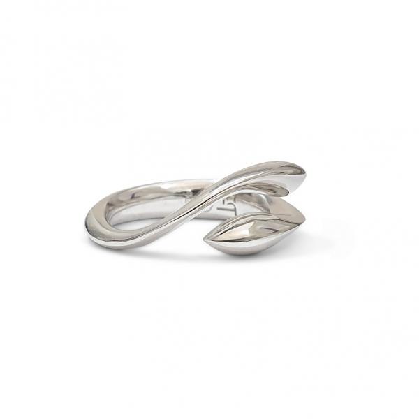 Silverfish ring